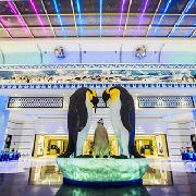 珠海長隆企鵝酒店3天2晚雙人套票(2晚酒店+海洋王國+《龍秀》表演+自助午餐)