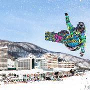 韓國洪川大明Vivaldi滑雪度假村+南怡島一日遊