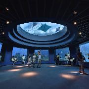 新加坡聖淘沙S.E.A海洋水族館貴賓之旅