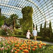 新加坡濱海灣花園雙館親子套票(掃碼入園)