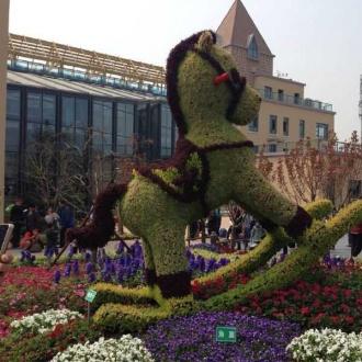 青島世界園藝博覽會